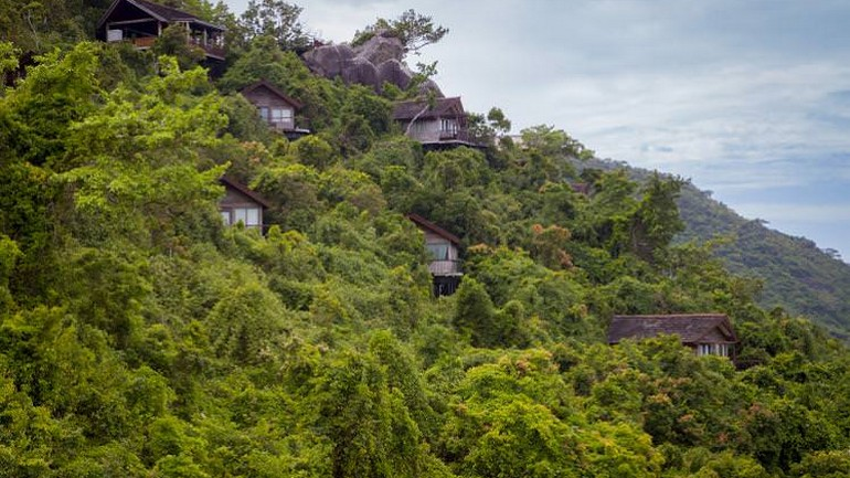 Nestled into the jungle Earthly Paradise.jpg